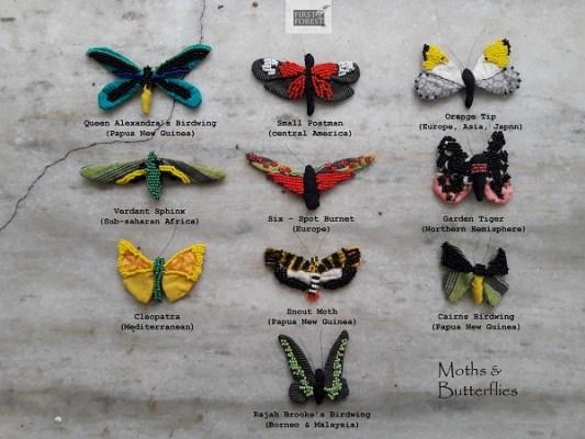Butterflies of the world, in beadwork