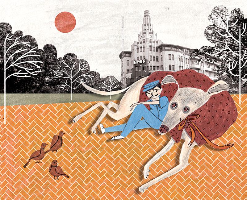 Sumedha Sah, Illustrator