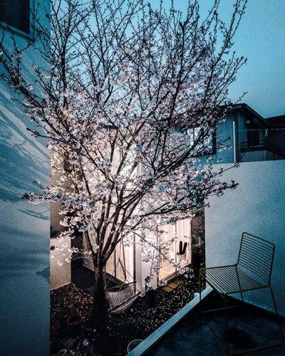 Office of Ryue Nishizawa, Moriyama House, 2005