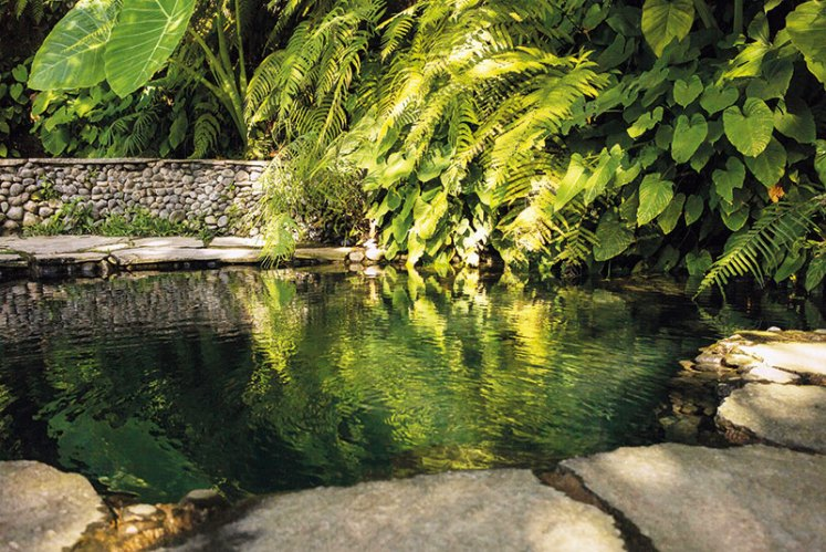 A water shrine at Gunung Kawi Sebatu temple