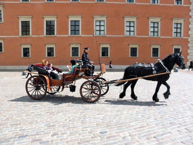 A horse ride outside the Royal Castle