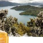 Kiehl's Pure Vitality Skin Renewing Cream, New Zealand