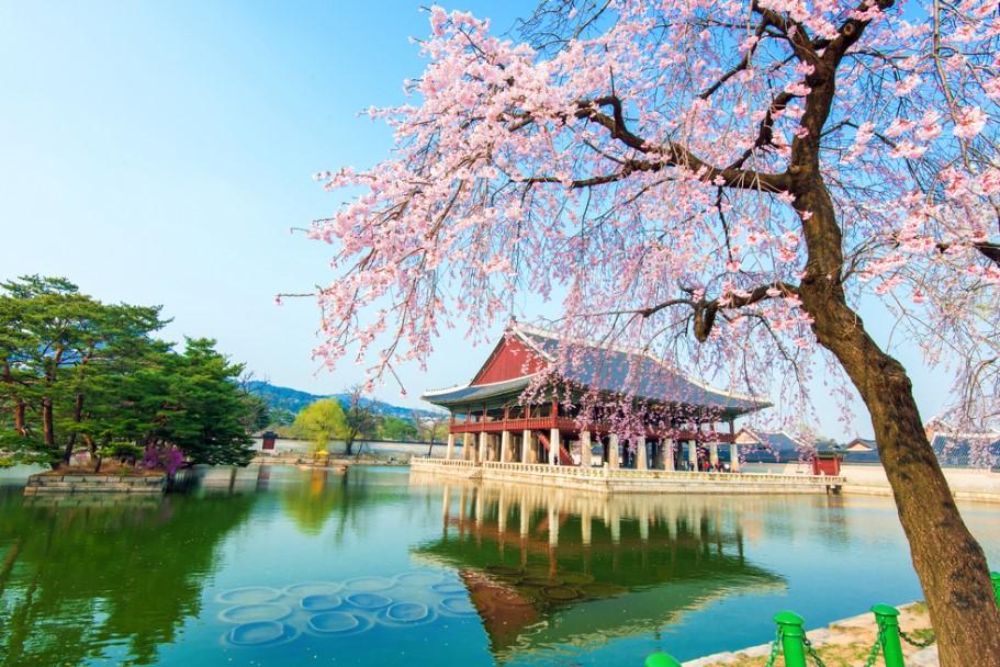 cbaf574552 Explore the Beautifully Bizarre City of Seoul   Verve Magazine ...