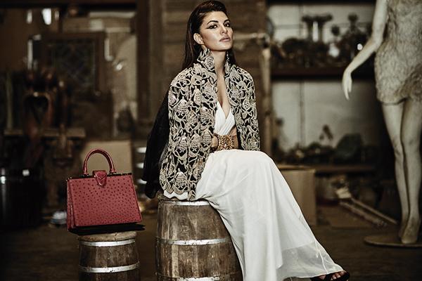 Jacqueline Fernandez, Bollywood Actress