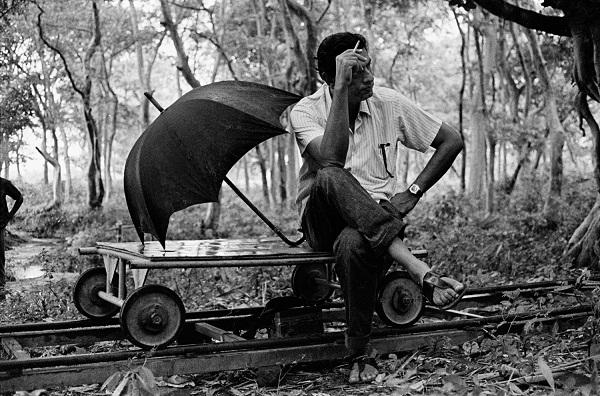 Asani Sanket (Distant Thunder), 1973 by Nemai Ghosh