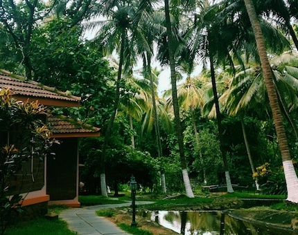 Kairali, Kerala, Ayurveda, Healing, Health, Travel, Spaces
