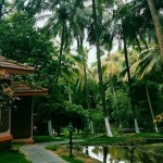 Kairali, Kerala, Ayurveda, Healing, Health, Travel, Spaces
