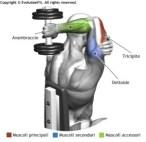 esercizi per le braccia 4