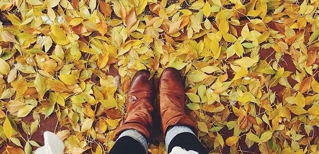 How to Embrace Fall Before It's Gone
