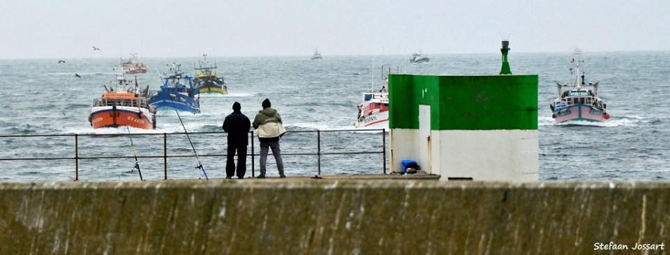 Meeuwen vlogen in het kielzog van de boten en probeerden een deel van de vangst te onderscheppen.