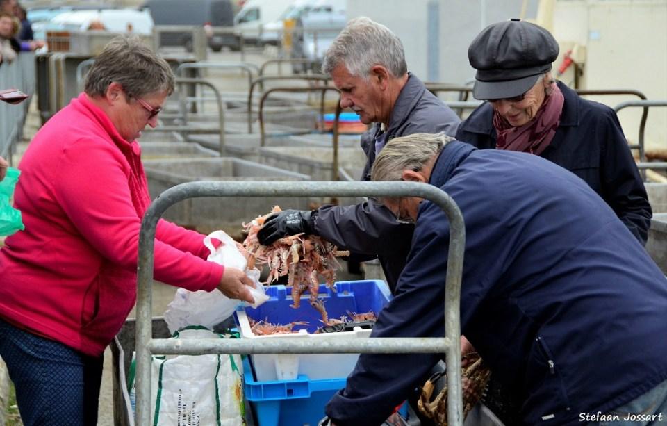 Op de kade wordt een klein deel van de vangst van de dag onmiddellijk doorverkocht aan particulieren. De rest wordt op de veiling verhandeld aan horeca en winkels.