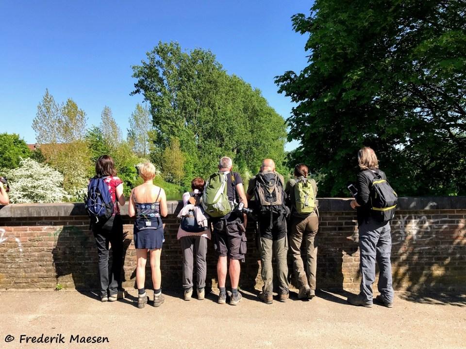 Turen over het water van de Oude Maas