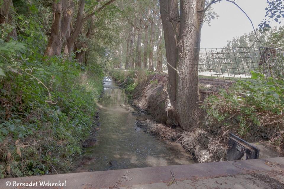 Vloedgracht Hornemolen in Sint-Truiden