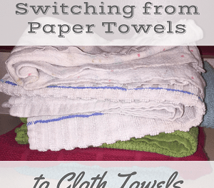 Why We Switched from Paper Towels to Cloth Towels!