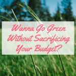 """<p style=""""text-align: center;""""><strong><span style=""""color: #ff5e78;"""">10 Easy Ways to Be Green & Frugal this Spring!</span></strong></p>"""