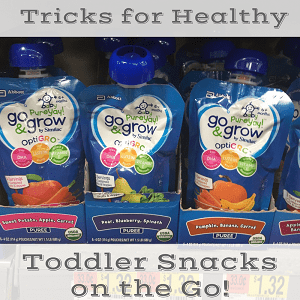 "<p style=""text-align: center;""><span style=""font-family: 'comic sans ms', sans-serif;""><strong><span style=""color: #ff5e78;"">5 SIMPLE TRICKS FOR HEALTHY TODDLER SNACKS ON THE GO</span></strong></span></p>"