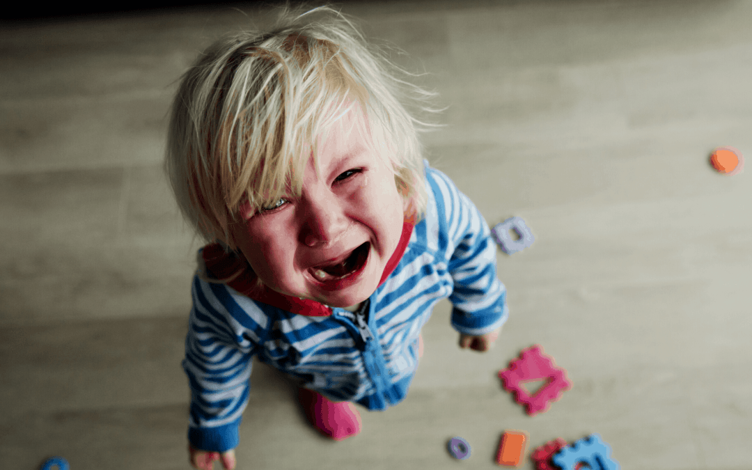 9 Tips for Surviving Autism Meltdowns