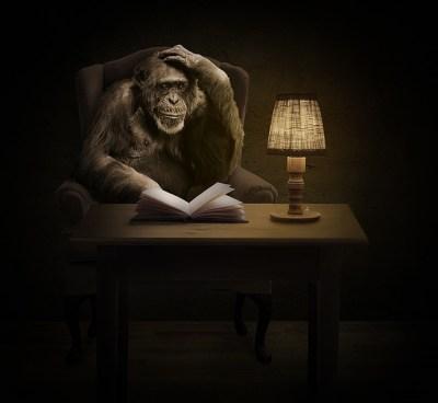 Imagen y semejanza antropocentrismo chimpancé