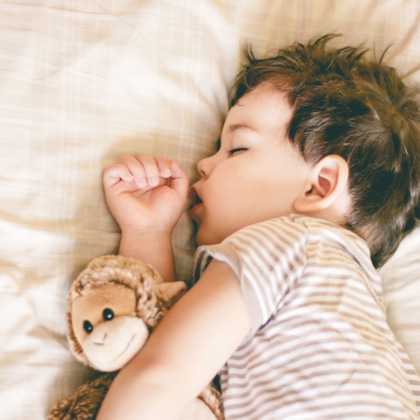 choosing the best pillow for your toddler