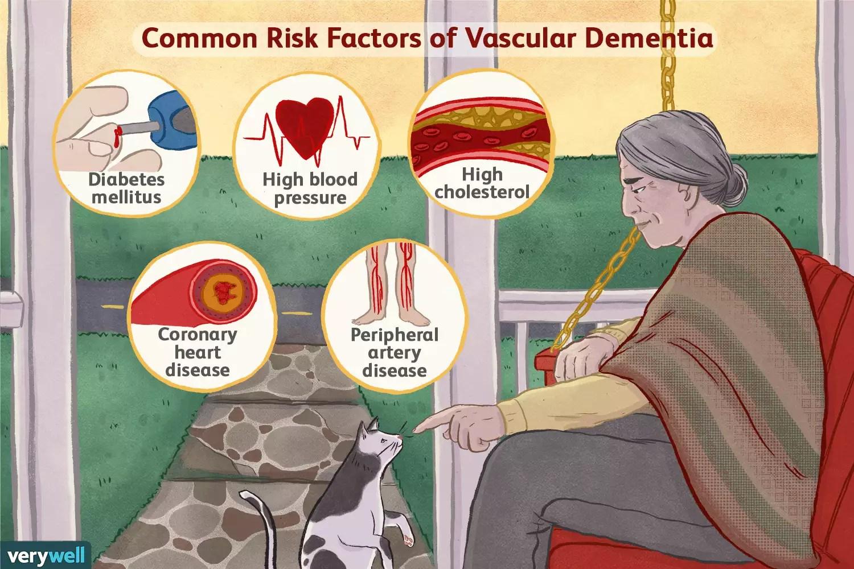 vascular dementia risk factors