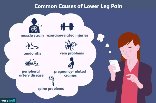 causes of lower leg pain