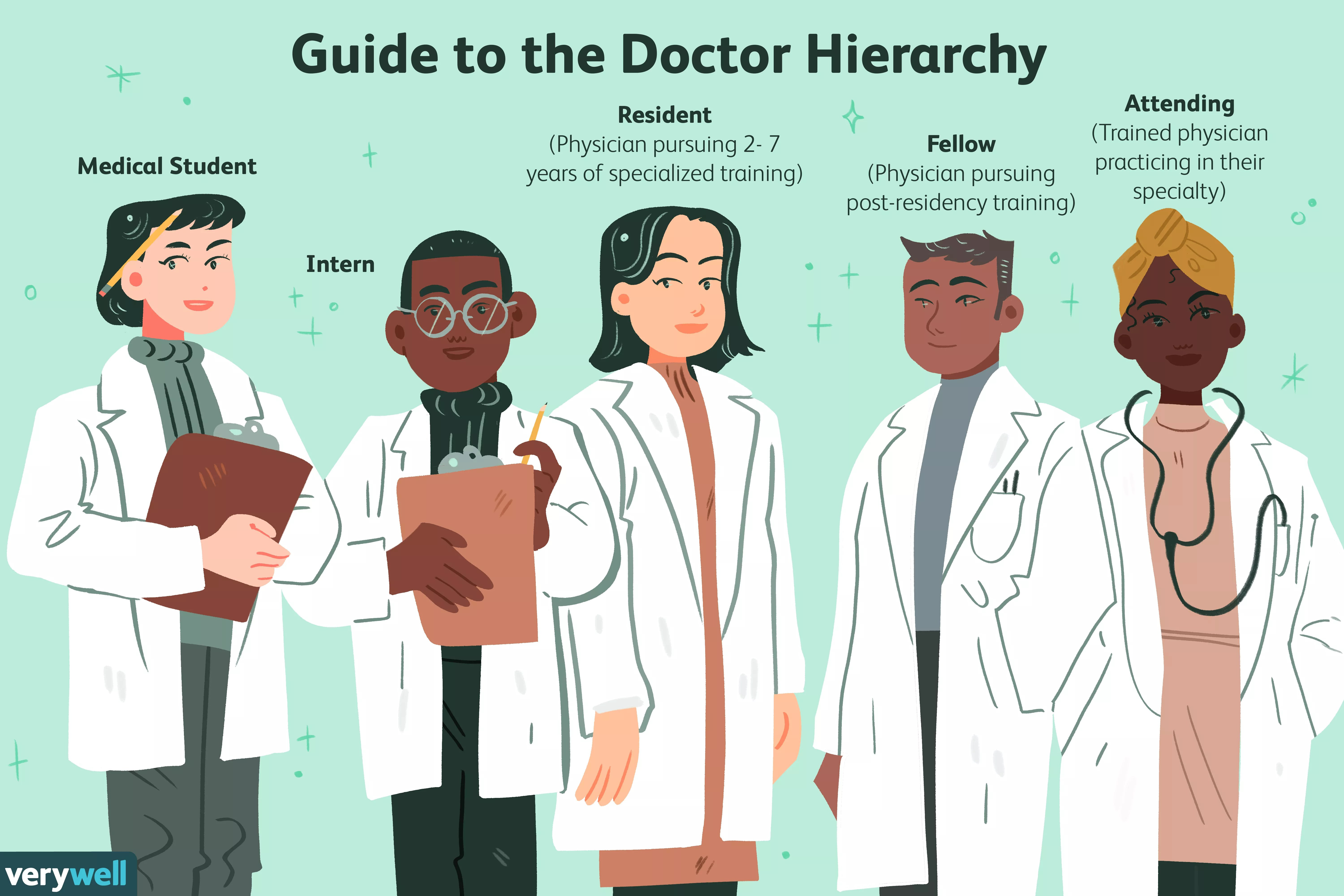Guide to the Doctor Hierarchy