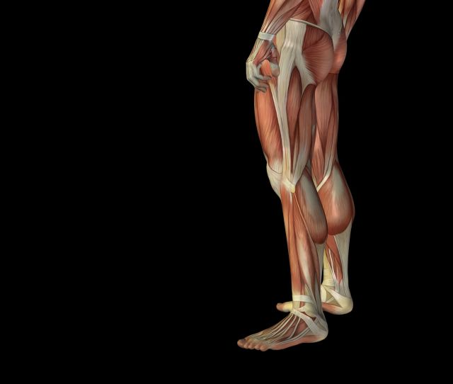 Sciatica Refers To Pain Down One Leg