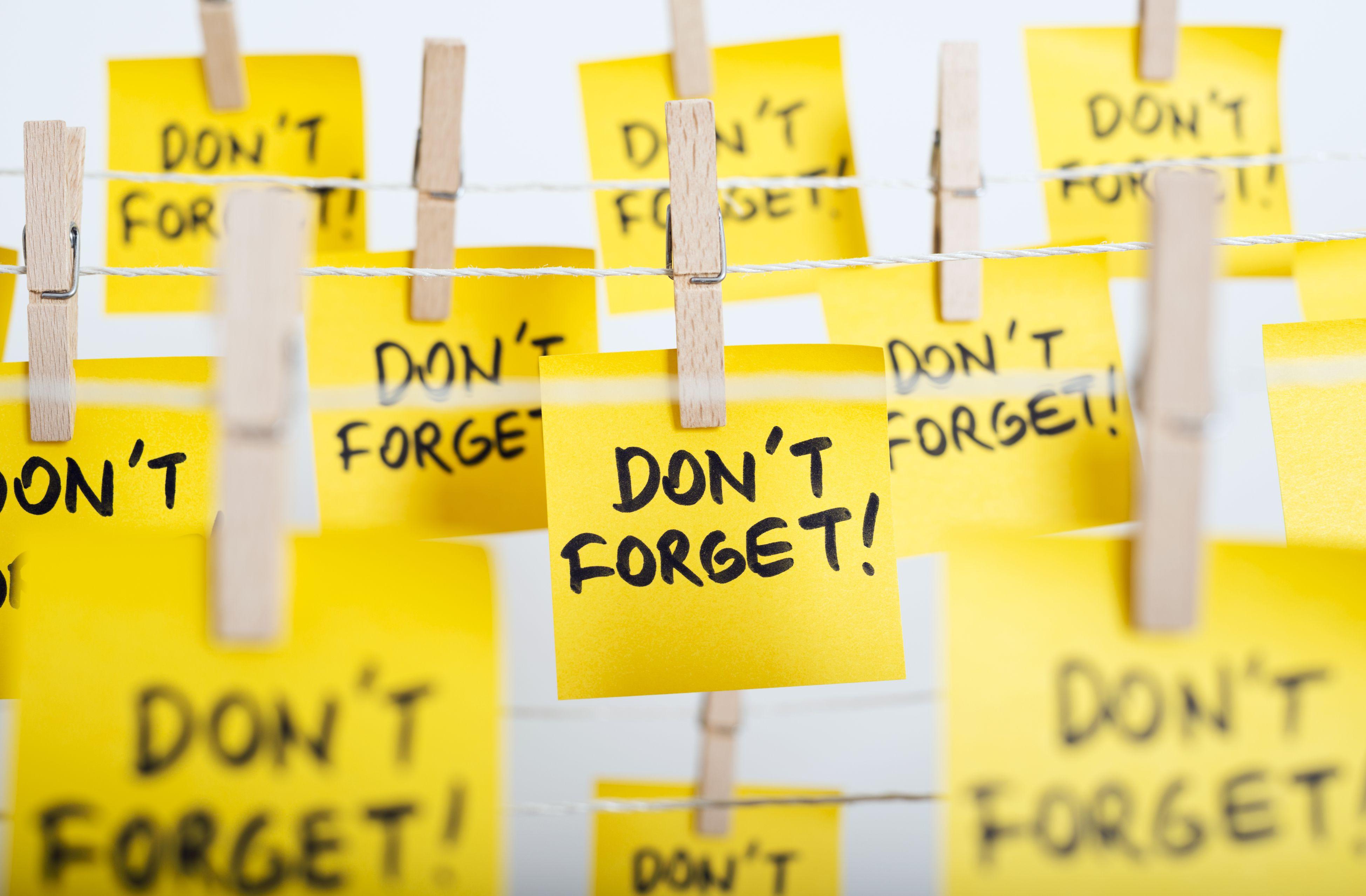 A Simple Diy Short Term Memory Experiment