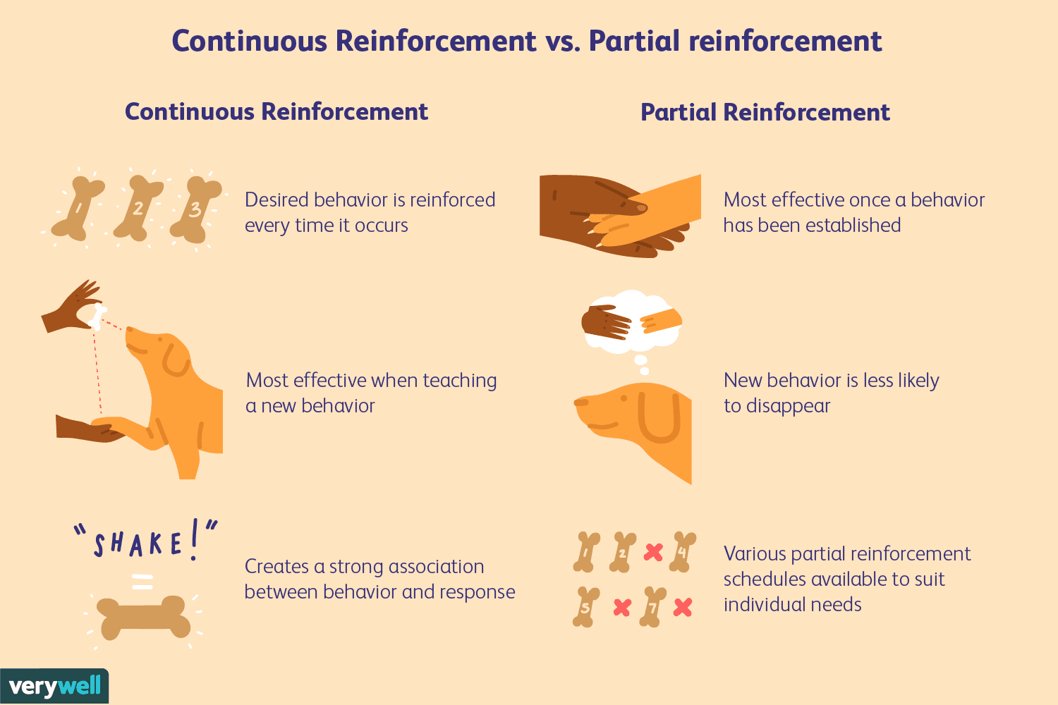 What Are The 4 Types Of Reinforcement Which One Do You