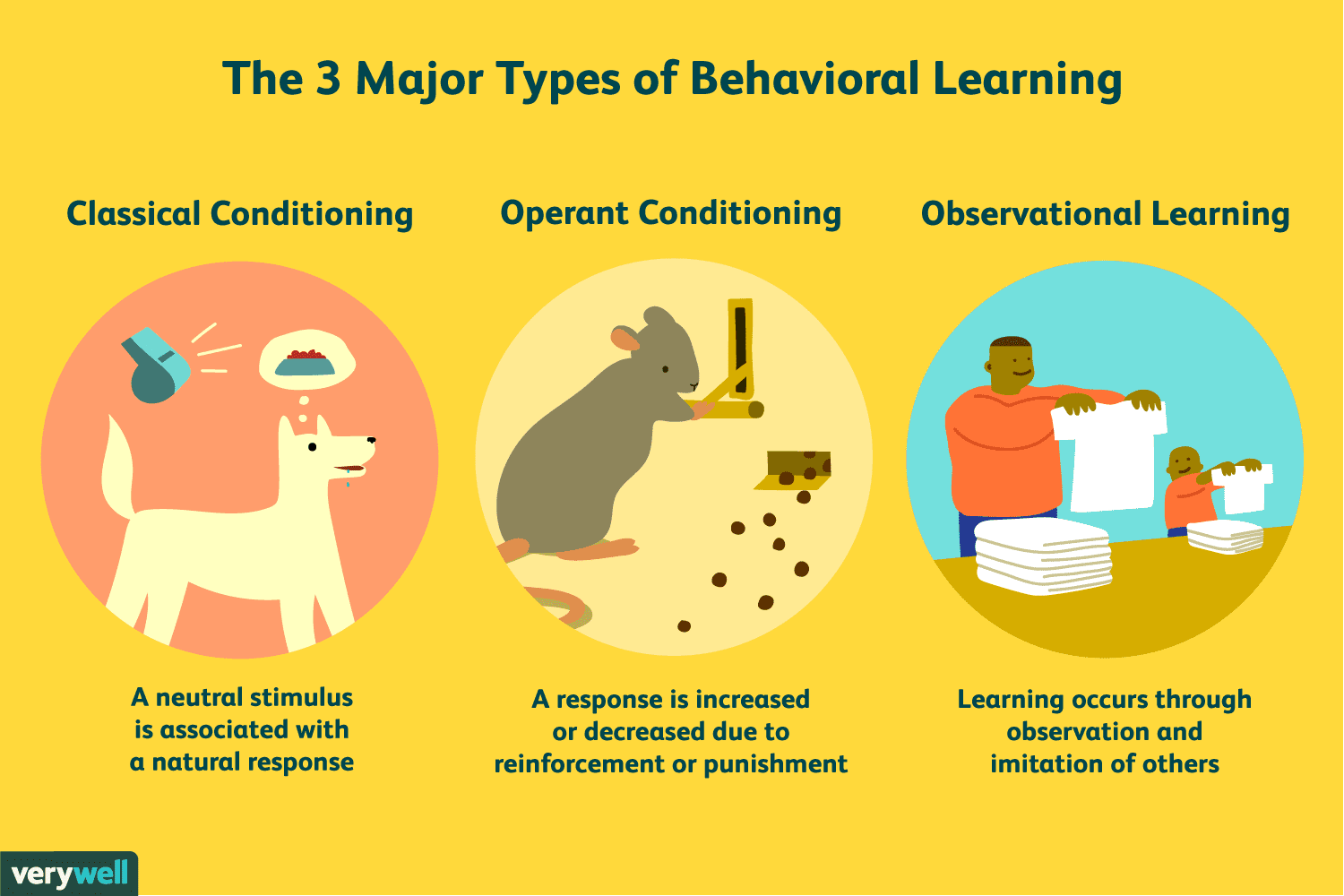 Classical And Behavioural Approaches To Management