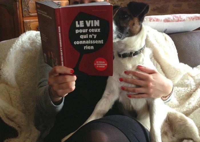Le vin pour ceux qui n'y connaissent rien par Ophélie Neiman - Miss Glouglou