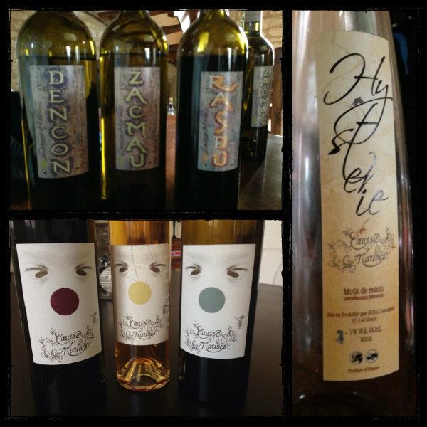 Photo des vins dégustés au domaine Causse Marines - Gaillac