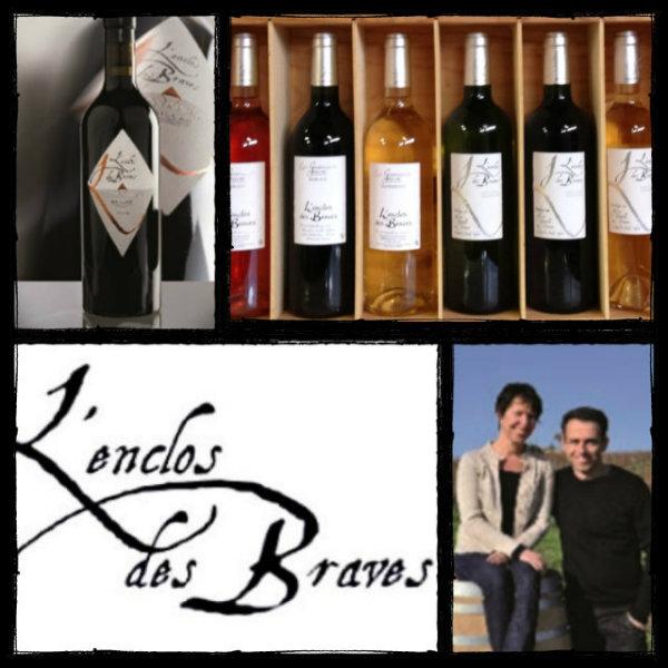 Photo des vins dégustés au domaine L'Enclos des Braves - Gaillac