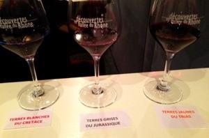 3 terroirs de Beaumes de Venise - salon Découvertes en Vallée du Rhône 2013 - DVR2013