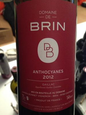 Anthocyanes---Domaine-de-Brin---Gaillac