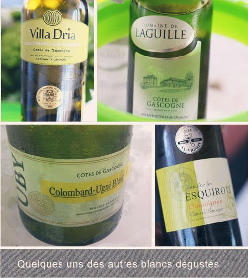 Villa-Dria---Domaine-de-Laguille---Uby---Domaine-des-Esquirots