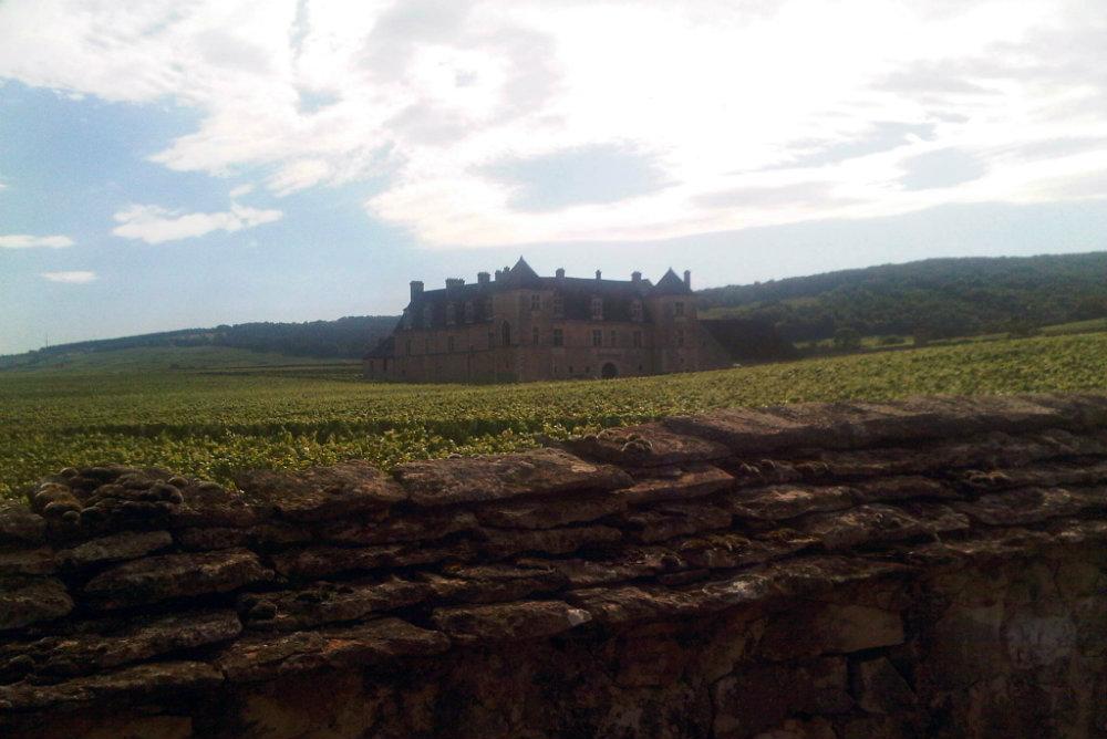 Clos de Vougeot (photo prise en été lors d'un précédent séjour en Bourgogne)