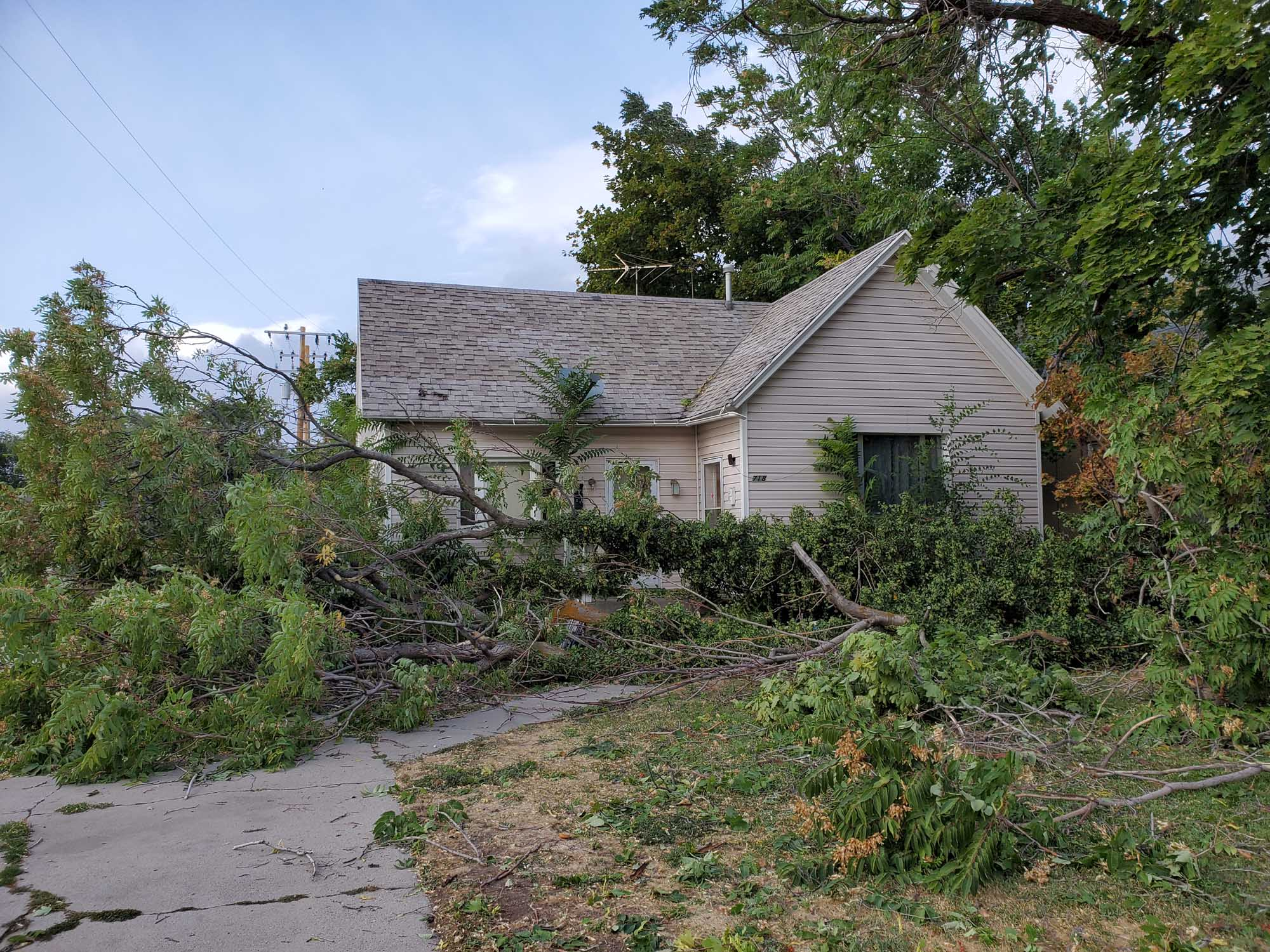 VIDEO:  Ogden Wind Event Damage and Cleanup