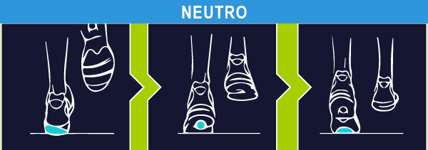 test pronatore neutro