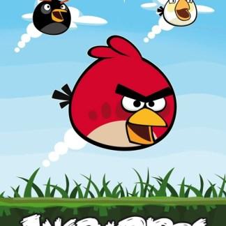 Angry Birds Fleece Dekens