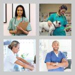 Uniforme Médicale Unisexes pour Hommes et Femmes – Ensemble: Haut et Pantalons Uniforme de la Santé pour Médecin Infirmières Dentistes – Tissu 100% Coton Sanforisé – Certif. Oeko-Tex (Blue, XXL)