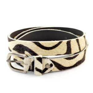 842 - Zebra
