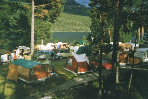 2001 (7)
