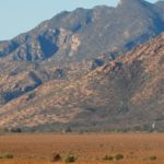 Plain old desert dirt - Arizona