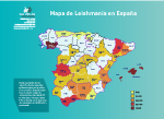 La terrible Leishmania