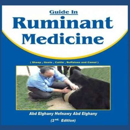 Guide In Ruminant Medicine 2nd Edition PDF