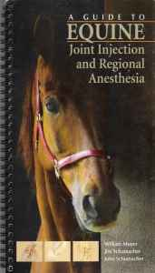 A Guide To Equine Injection And Regional Anesthesia PDF