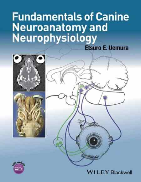 Fundamentals Of Canine Neuroanatomy And Neurophysiology PDF