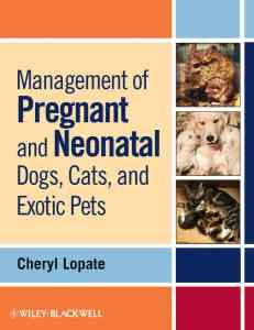Management Of Pregnant And Neonatal Dogs, Cats, And Exotic Pets PDF