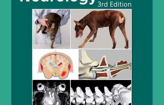 Practical Guide To Canine And Feline Neurology 3rd Edition PDF